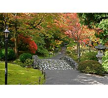 Fall at the Japanese Gardens in the Washington Park Arboretum Photographic Print