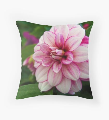 Pretty as a picture! Throw Pillow