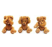 Three wise bears Photographic Print