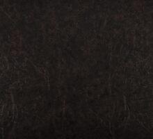 leather dark by Artur Mroszczyk
