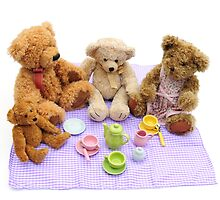 teddy bears picnic by faithimages