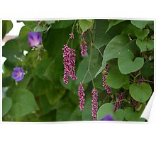 Pink Flowers with Leaves Poster