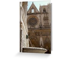 fountain and cathedral st jean, Lyon Greeting Card