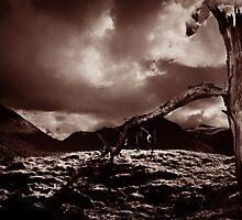 Glen Lyon by Richard Ion