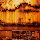Rust On A Train by Larry Costales