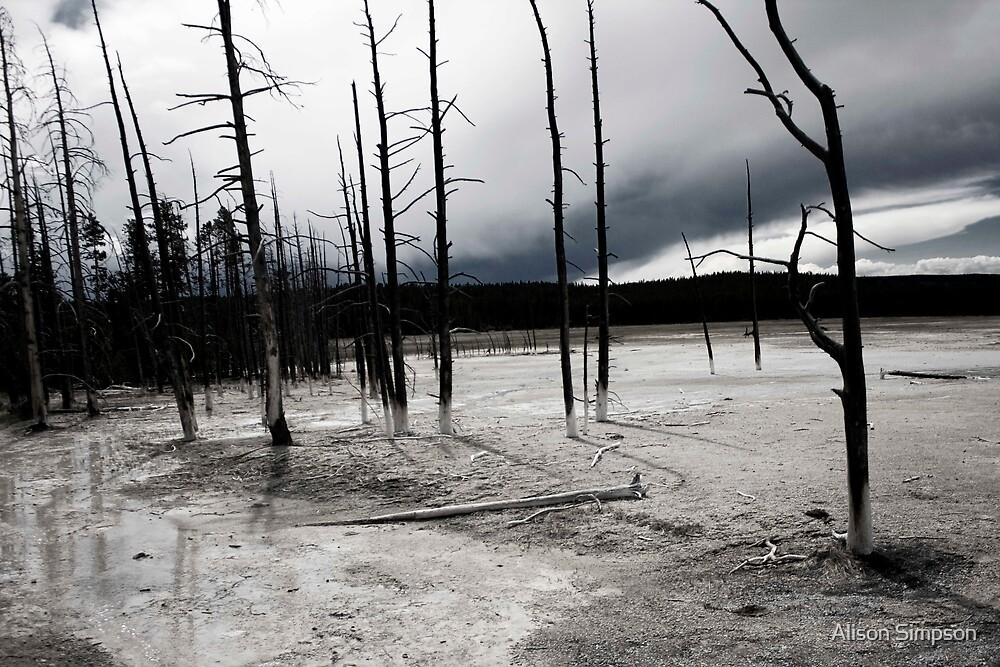 Desolate Landscape by Alison Simpson