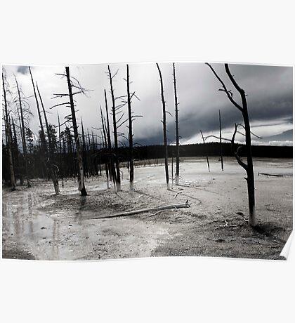 Desolate Landscape Poster