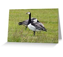 Arctic Geese Greeting Card
