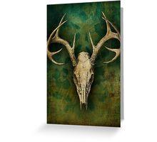 My deer... Greeting Card