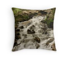 Caledonia State Park WaterFall Throw Pillow