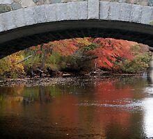 Like a Bridge... by papasan59