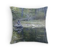 Reflecting . . .  Throw Pillow