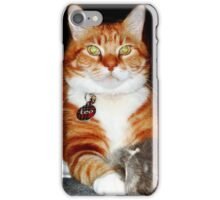 Cat and Mouse Portrait iPhone Case/Skin
