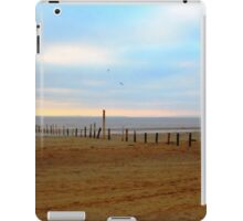 Tranquil Sands iPad Case/Skin