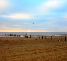 Tranquil Sands by Tinyevilpixie1