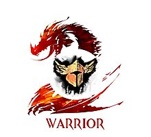 Guild Wars 2 Warrior  Photographic Print