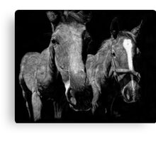 Future Winners Canvas Print