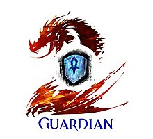 Guild Wars 2 Guardian Photographic Print