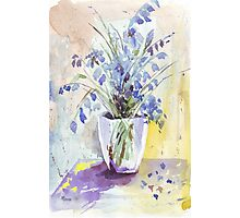 The Bluebell is the sweetest flower Photographic Print