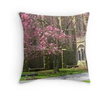 George Washington's cherry trees stand guard Throw Pillow