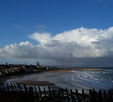 St.Andrew's Castle #3 by Derek Chalmers
