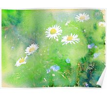 Daisies and Forget Me Not Flowers Poster