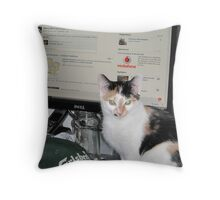 Cat Facebook is REAL !!!!!!!! Throw Pillow