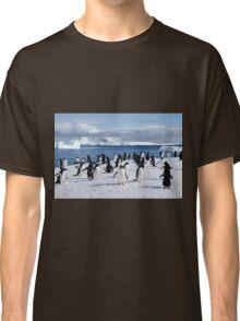 Gentoo penguins (Pygoscelis papua). Antarctica Classic T-Shirt