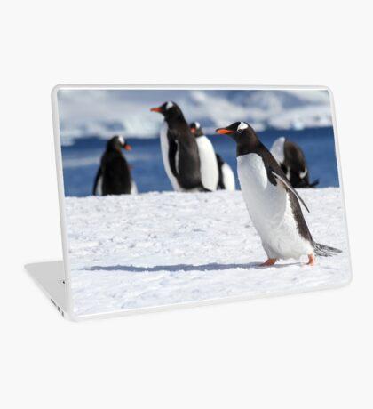 Gentoo penguins (Pygoscelis papua). Antarctica Laptop Skin