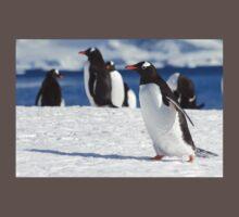 Gentoo penguins (Pygoscelis papua). Antarctica Baby Tee