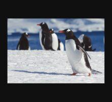 Gentoo penguins (Pygoscelis papua). Antarctica One Piece - Short Sleeve
