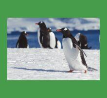 Gentoo penguins (Pygoscelis papua). Antarctica Kids Clothes