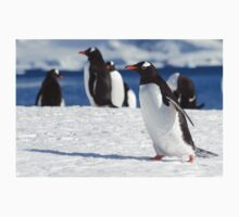 Gentoo penguins (Pygoscelis papua). Antarctica One Piece - Long Sleeve