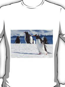 Gentoo penguins (Pygoscelis papua). Antarctica T-Shirt