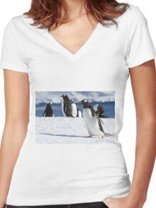 Gentoo penguins (Pygoscelis papua). Antarctica Women's Fitted V-Neck T-Shirt