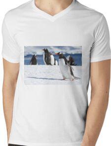 Gentoo penguins (Pygoscelis papua). Antarctica Mens V-Neck T-Shirt