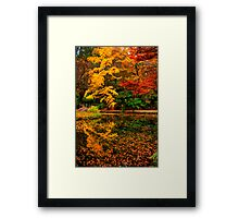 A feast for the senses at Alfred Nicholas Gardens Framed Print
