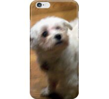 Young Maltese iPhone Case/Skin