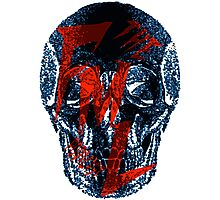 theFMLpodcast - Skull Logo Photographic Print