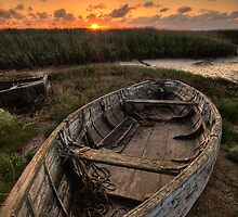 Old Row Boat by AntonyB