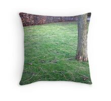 tree with hedge and bench harrogate spa gardens Throw Pillow