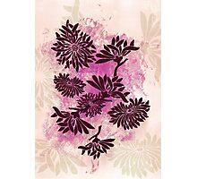 Peonies (black on pink) Photographic Print