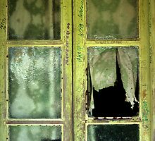 Broken Window by sonjas