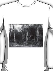Dorchester Aspen Monochrome T-Shirt