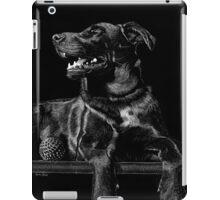 Zephyr iPad Case/Skin