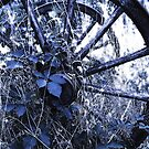 Conques Wheel Bleu by ragman
