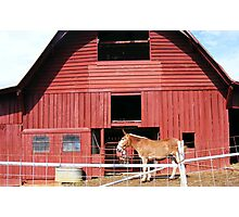Now thats a Red barn Photographic Print
