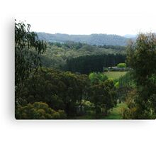 Glorious Hills View Canvas Print