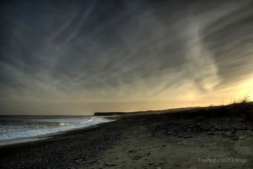 Fading Light on Morrison's Beach by TheNatureOfThings
