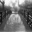 Rain in early June by maka1967